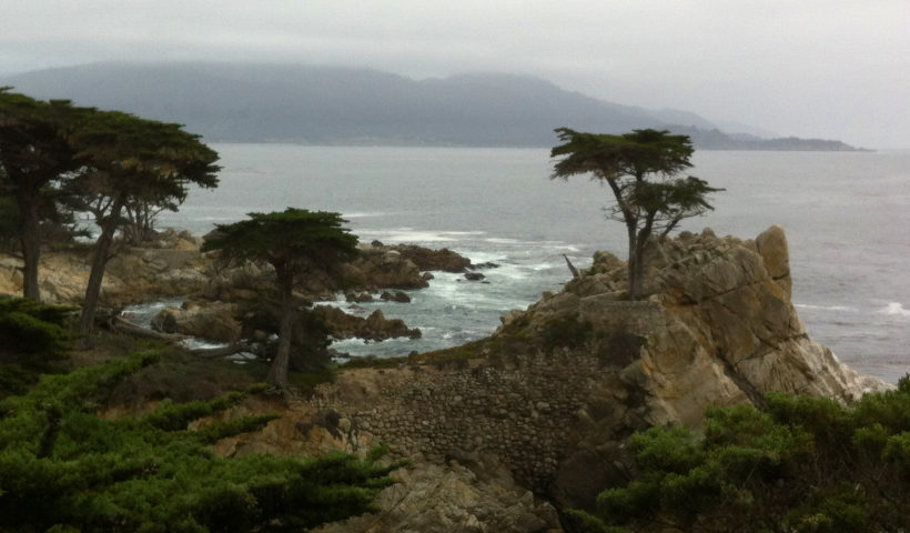 17-Mile Drive, Carmel, Pacific Grove, Monterey, Central Coast, Travel, California, Beaches