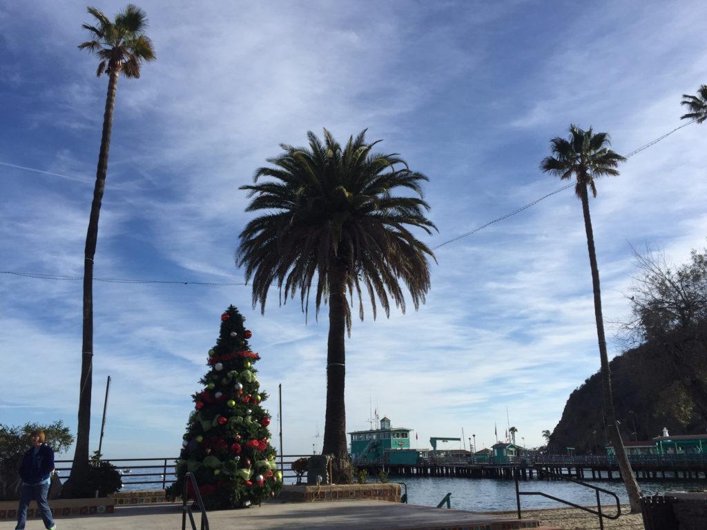 Avalon, Catalina Island, December, Travel