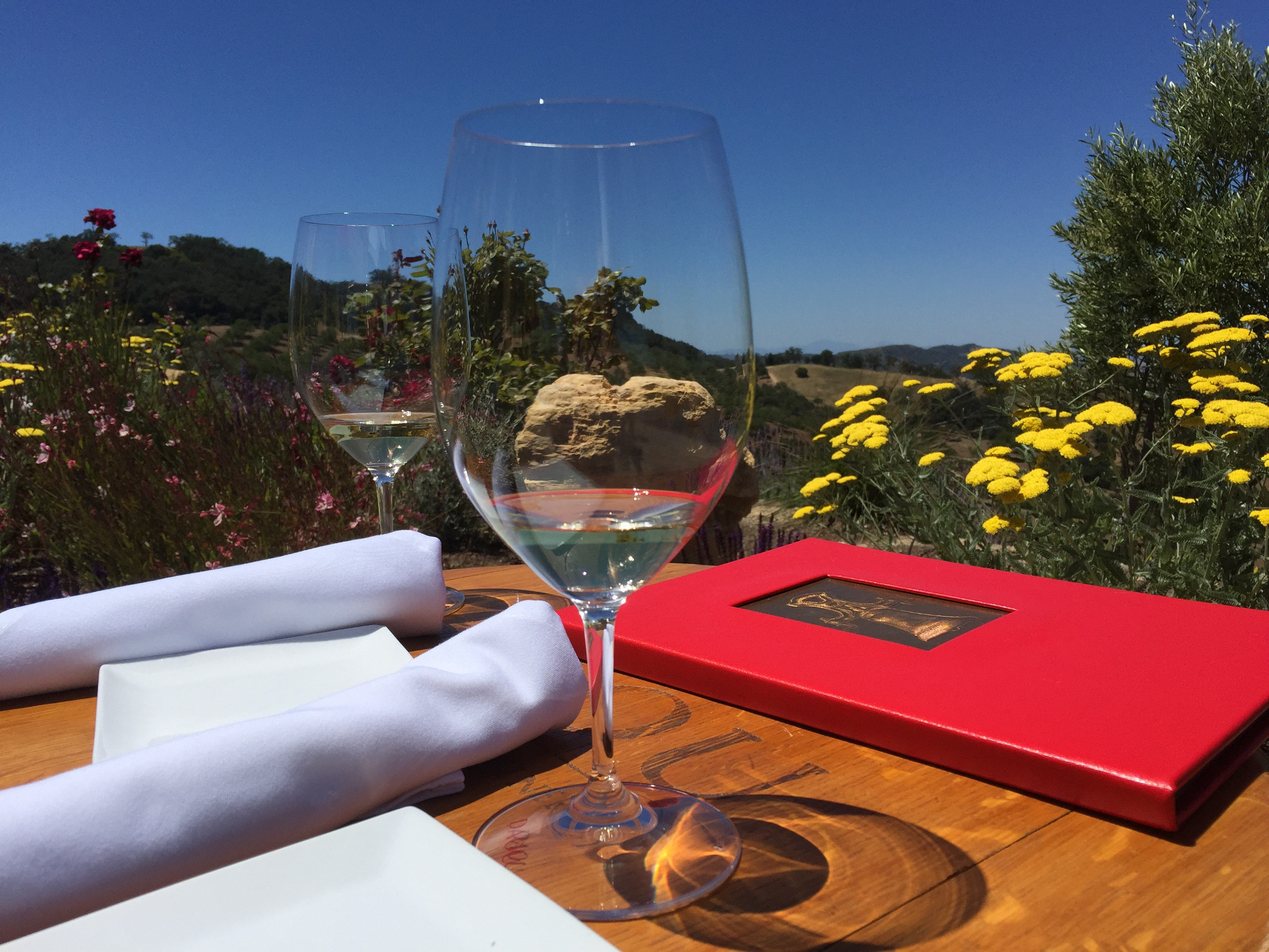 Daou, Wine Tasting in Paso Robles, California