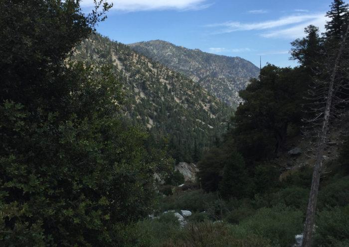Mt Baldy hike