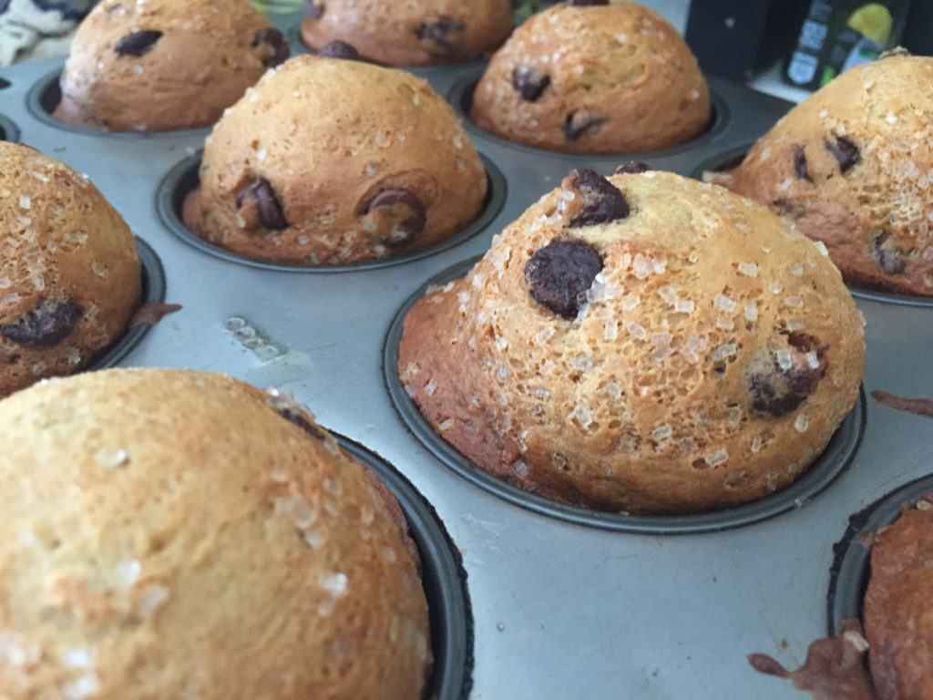Chocolate Chip Muffins Those Someday Goals