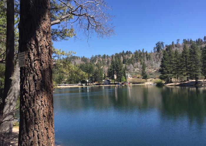 Mountain cabin rentals california green valley lake those someday goals