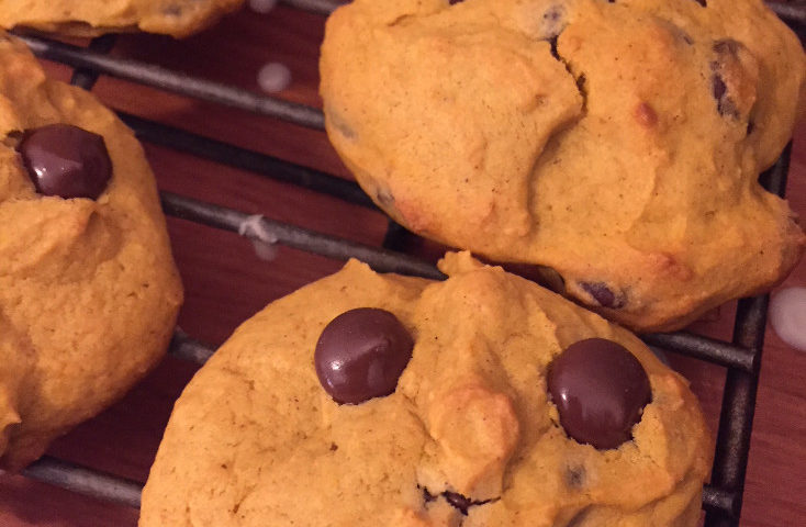 cute face soft chocolate chip pumpkin cookie those someday goals